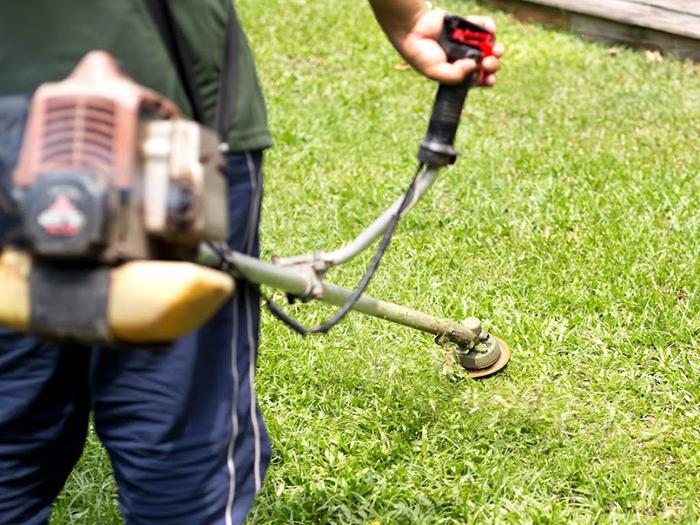 芝刈り機を持って芝刈りをしている男性